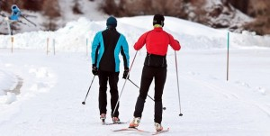 cross-country-skiing-3020751_640